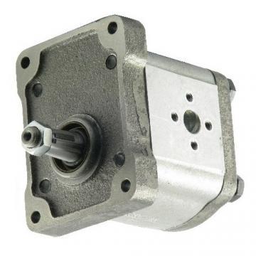 Orsta Hydraulik Pompa Idraulica a Ingranaggi Tipo 32/20.0 Spaccalegna