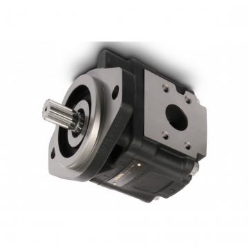 CASAPPA Zahnradpumpen Kit für Mehrfachpumpen Montagesatz 51T6 Polaris 20/10