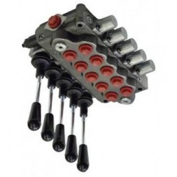 Distributore idraulico Ama a 1 leva doppio effetto 3/8 - oleodinamico