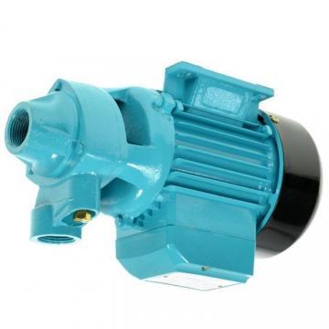 Pompa a Mano per Estrazione Olio Acqua Benzina Diesel liquidi motore manuale