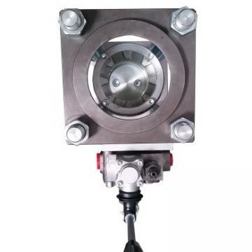 Lamborghini Aventador Genuine Hydraulic Pump Motor E GEAR Transmission