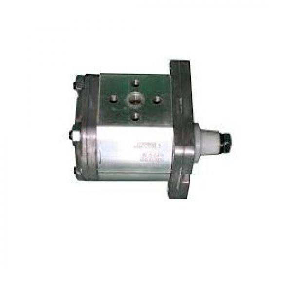 Pompa Idraulica ad Ingranaggi Gruppo 2 Standard,Albero Conico,11,4 cm3 - 80965 #1 image