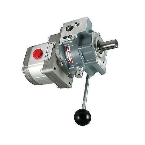 8L 12V Pompa Idraulica Gruppo Oleodinamica Doppio Effetto 3200 PSI #1 image