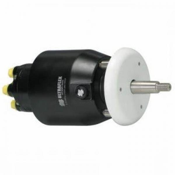 Power Steering Pump HP003 Shaftec PAS 46533006 46534756 46737907 71788795 #1 image