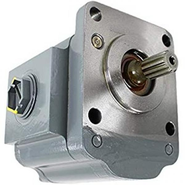 Pompa idraulica per trattore e spaccalegna GR2 C 55 DX #1 image