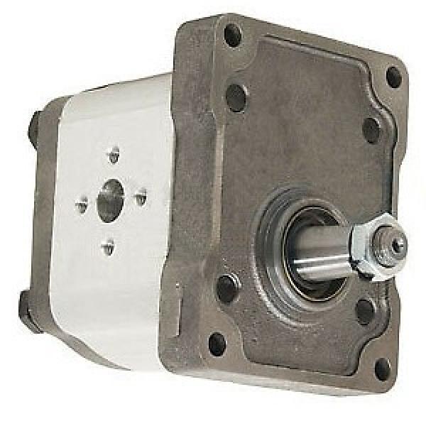 Pompa idraulica per trattore e spaccalegna GR2 C 55 DX #2 image