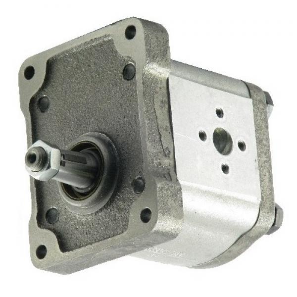 pompa idraulica casappa plp30 fiat 120/1355c #1 image