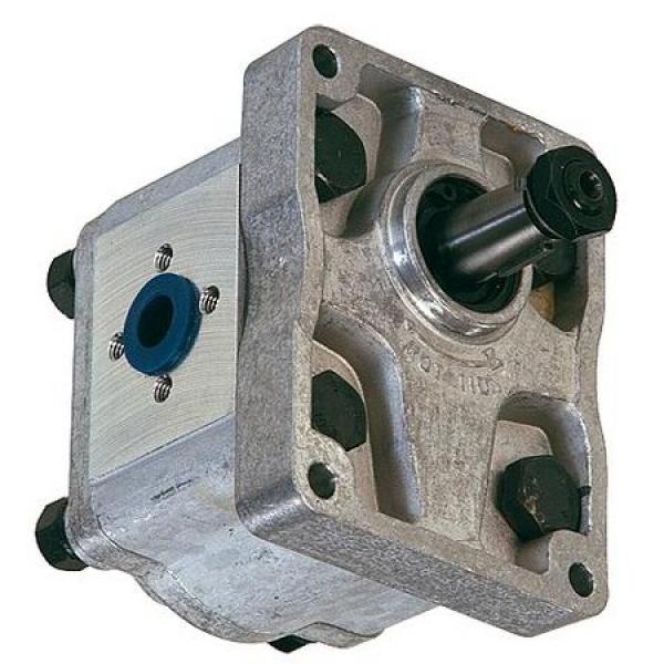 Aggregato Idraulico a Motore Con Pompa 200bar P. Es. Per Spaccalegna Parte Nuova #1 image