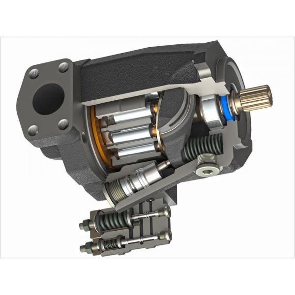 Caproni Hydraulic Gear Pump Stage Group 2 20A(C)4,5X077  250bar 14,33l/min #1 image