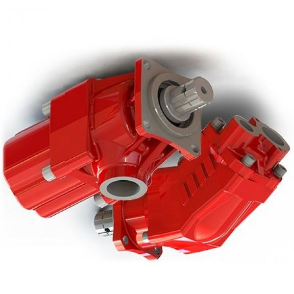 TX11234, 5129486, 8282886, 5169039 Long/ FIAT/ FORD/ Case tractor hydraulic pump #1 image