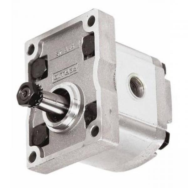 10A(C)6,1X053G Caproni Hydraulic Gear Pump Stage Group 2 Roquet Casappa Motor #1 image