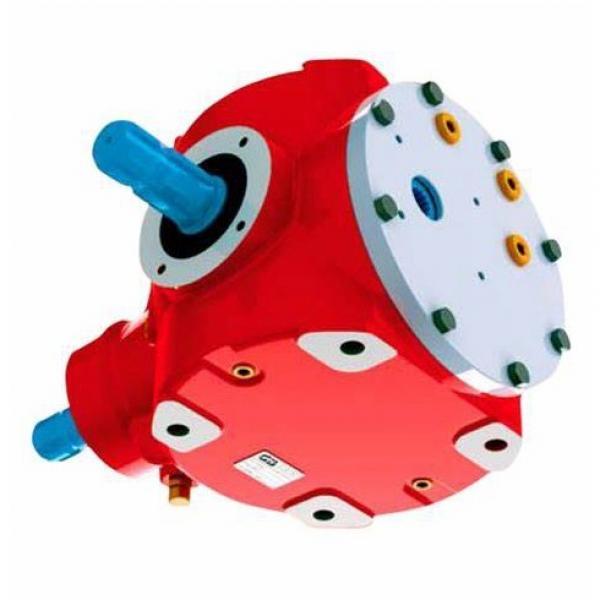 Pompa ad Ingranaggi Idraulica C31 Gruppo 2 per Trattore Cod. AMA 17009 #3 image