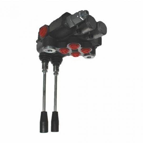 Distributore oleodinamico 3 leve Doppio Effetto 40 lt trattore muletti #1 image