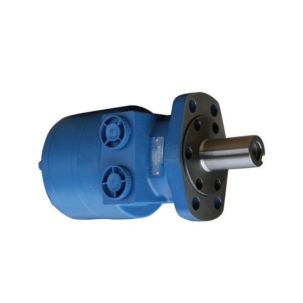 Tipo di motori idraulici ORBITALE OMP OMR SMR BMR 32 - 400 come DANFOSS ALBERO 25 mm #2 image