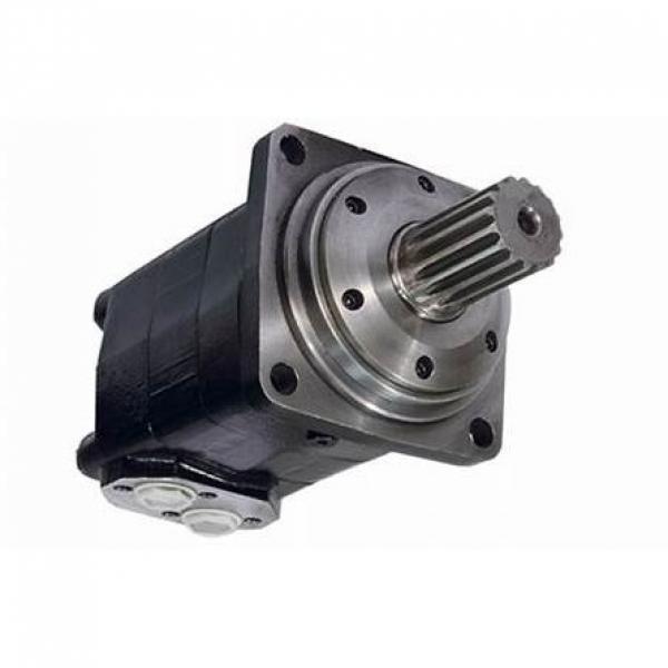 """Idraulico Motore 200,0 Cc / Rev P. T. O.Albero Maschio 1 3/8 """" #1 image"""