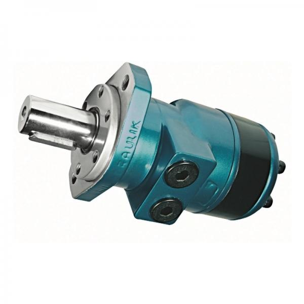 Flowfit Alluminio Idraulico Pto Cambio Gruppo 2 Gruppo Pompa #2 image