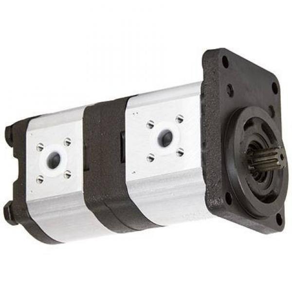 Sollevatore per gru a pompa idraulica a doppio effetto da 10 quart #1 image