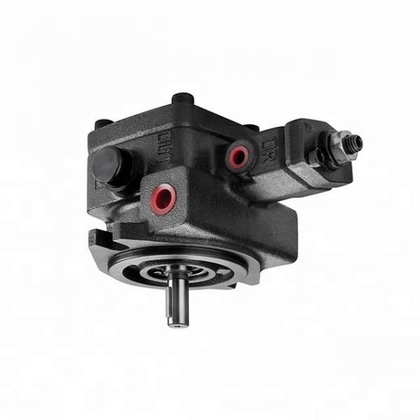 Pompa idraulica a doppio piano Pompa ad ingranaggi CNBA-8.8/2.1 11GPM 3000PSI #1 image