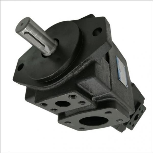 62660 Massey Ferguson Idraulico Pompa Cambio 52 62 64 Doppio Flusso #1 image