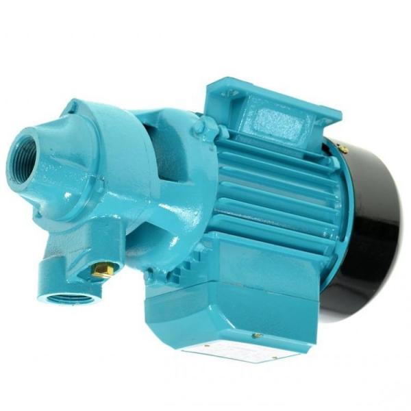 Pompa a Mano per Estrazione Olio Acqua Benzina Diesel liquidi motore manuale  #1 image