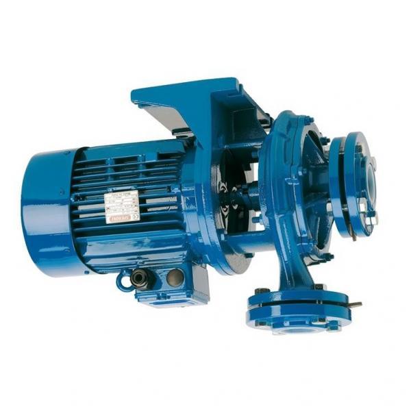 Pompa Idraulica per Case IH / Ihc Cs 78 80 86 94 100 con Valmet-Motor #1 image