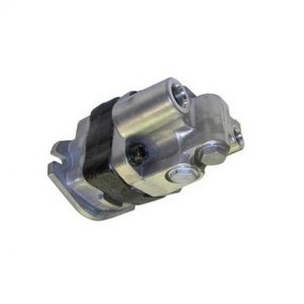 POMPA dell'olio idraulico caterpillar 5F4624 Seal #1 image