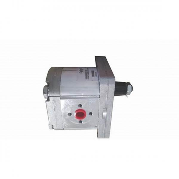 Deutz Hydraulic Pump Rexroth #1 image